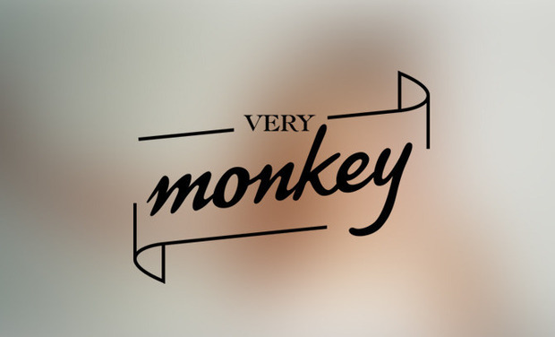 Project visual Very Monkey