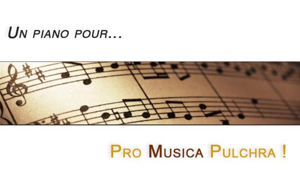 Visuel du projet Un piano pour nos festivals | Een concertpiano voor onze festivals