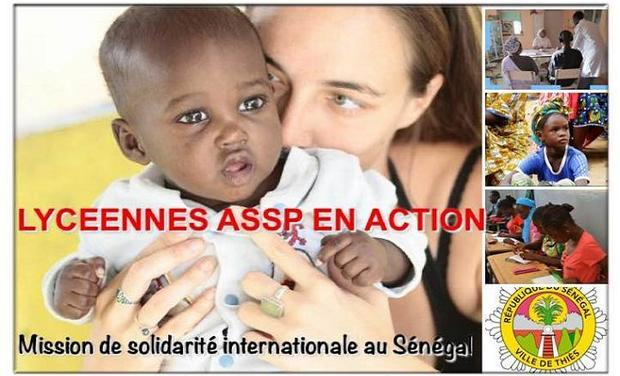 Large_senegal_fin-1463516725-1463516743