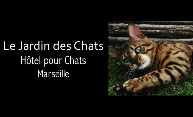 Visuel du projet Le Jardin des Chats - Hotel pour chats Marseille