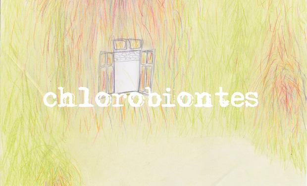 """Visuel du projet Exposition """"Chlorobiontes"""" au CHR"""