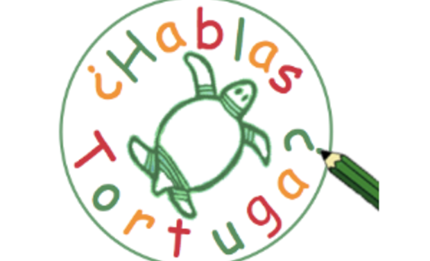 Visueel van project Sensibilisation dans les écoles à la protection des tortues marines