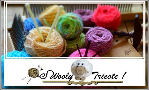 Visuel du projet Wooly Tricote !