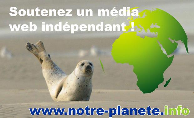 Visuel du projet Aidez-nous à développer un média indépendant !