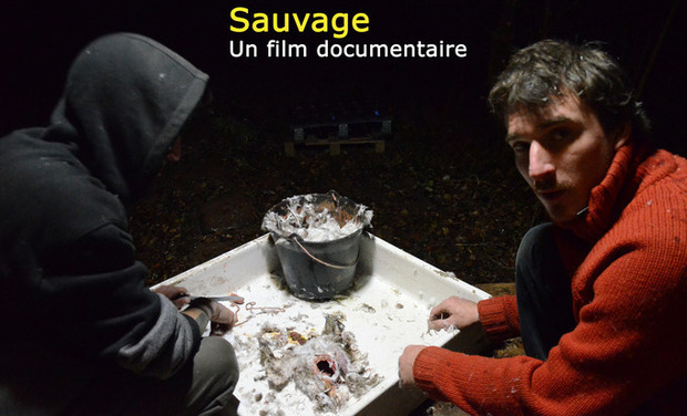 Project visual 'Sauvage', Ou la réalisation d'un film documentaire