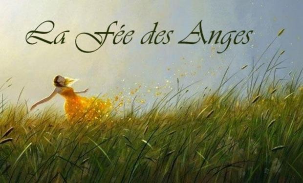 Visuel du projet La Fée des Anges
