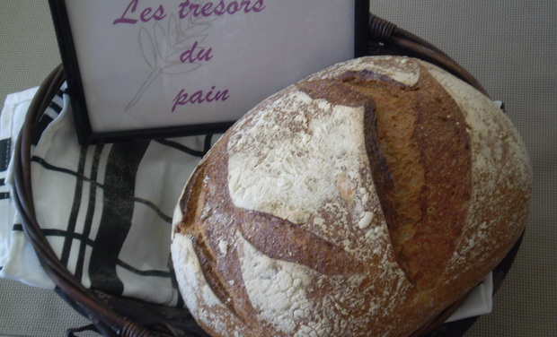 Visuel du projet Les trésors du pain