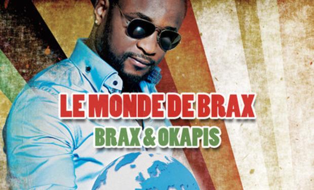 Project visual LE MONDE DE BRAX