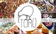 Widget_toru_visuel-1468250952-1468251016