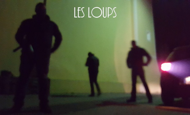 Project visual LES LOUPS -SERIE POLICIERE-