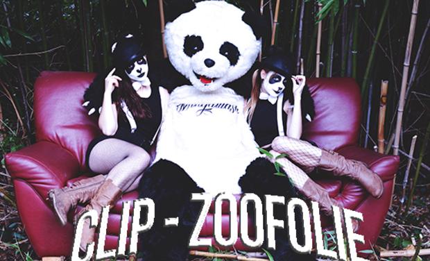 Visuel du projet Clip - Mingawash - Zoofolie