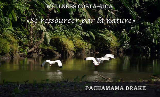 Visuel du projet Se ressourcer par la nature au Costa-Rica