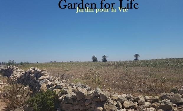 Visuel du projet Garden for Life / Jardin pour la Vie