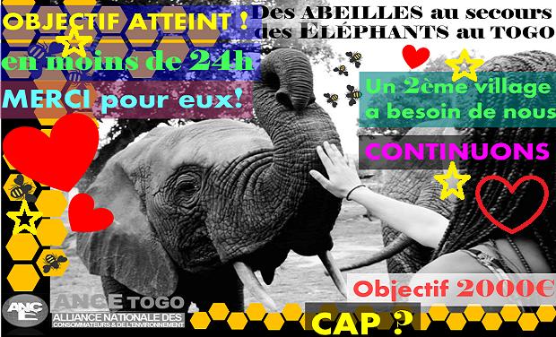 Visuel du projet Des ABEILLES au secours des ÉLÉPHANTS au Togo!