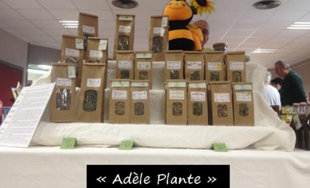 "Visueel van project ""Adèle Plante"""