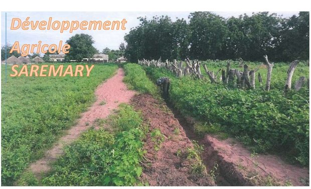 Project visual Développement Agricole SAREMARY