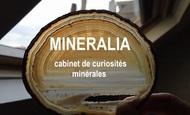 Widget_mineralia_agathe_titre-1474872341-1474872352