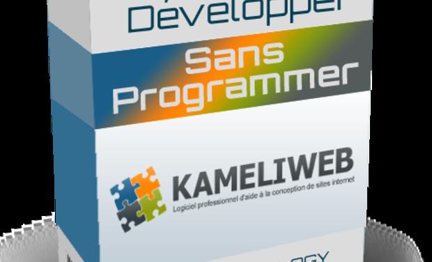 Visueel van project Kameliweb