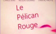 Widget_pelican_affiche_2-1473523169
