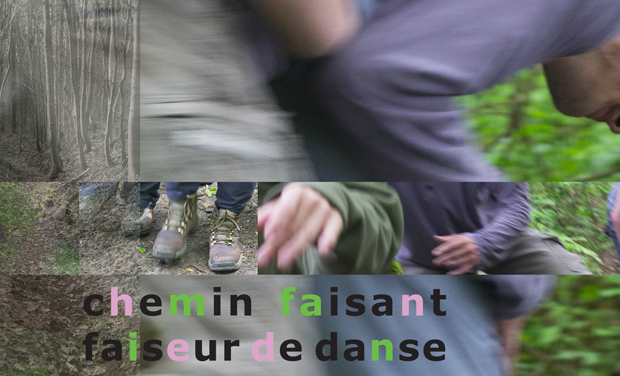 Visuel du projet SAISONS - Automne - Chemin faisant, faiseur de danse