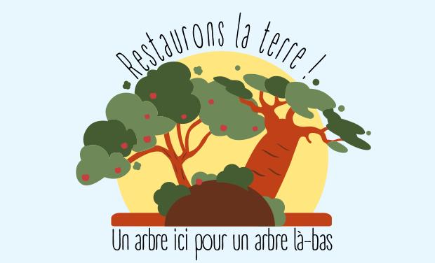Project visual Restaurons la Terre - plantons des arbres en Belgique et au Burkina
