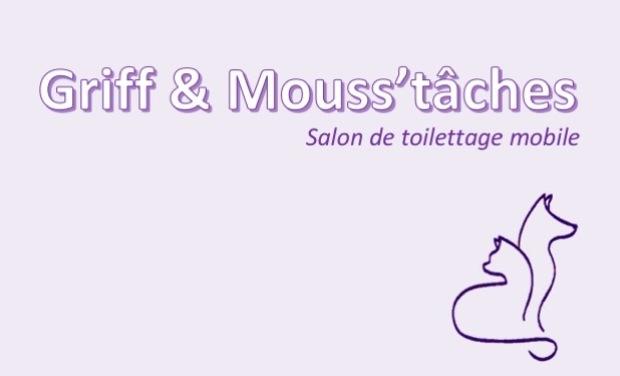 Visuel du projet Salon de toilettage mobile