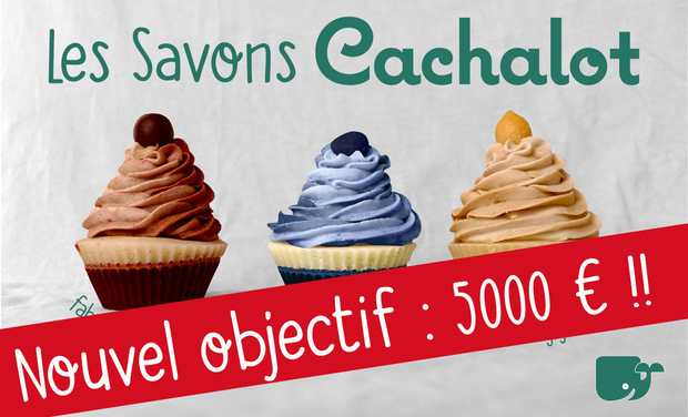 Project visual Les Savons Cachalot