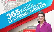 Widget_365_jours_apprendre_luxembourgeois-1474988502-1474988548