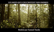 Widget_extrait_les_mots_que.._kkbb-1489756398-1489756452