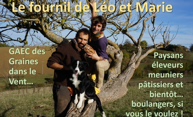 Project visual Le fournil de Léo et Marie
