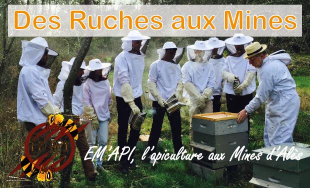 Project visual Des ruches aux Mines