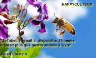 Widget_couverture-1479302045-1479302054