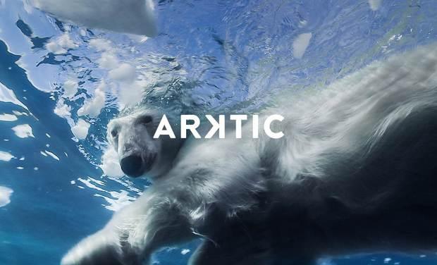 Visuel du projet Expédition polaire ARKTIC