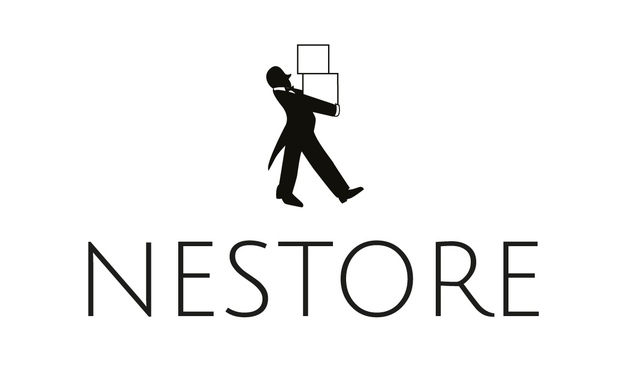 Project visual Nestore