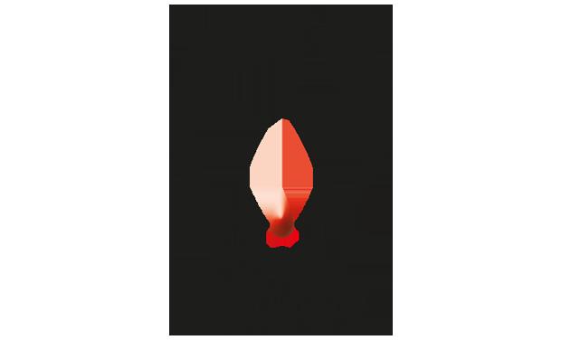 Visuel du projet OlfaGones