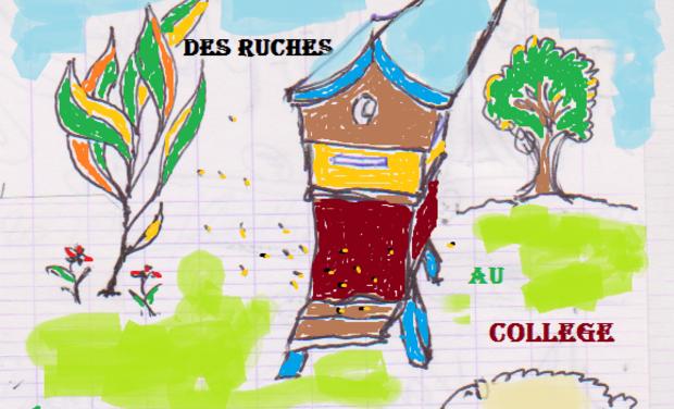 Visueel van project Des ruches au collège
