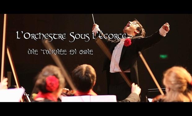 Project visual L'Orchestre Sous l'Ecorce