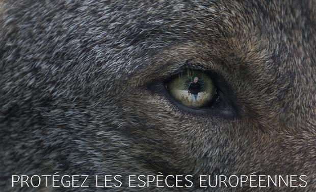 Visueel van project Espèces Européennes Menacées