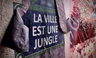 Widget_la_ville_est_une_jungle_-1483794672-1483794689