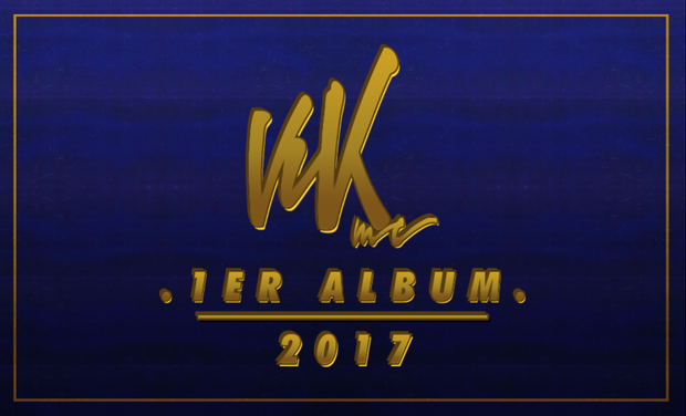 Visuel du projet Premier Album de VIK !