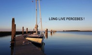 Widget_long_live_percebes-1486066284-1486066293