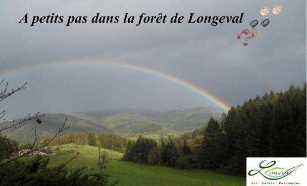 Visuel du projet A petits pas dans la forêt de Longeval