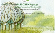 Widget_passobio-1486129338-1486129355