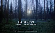 Widget_que_je_demeure-1486722863-1486722874