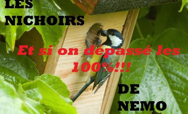 Visueel van project Aidez les oiseaux