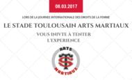 Widget_les_arts_martiaux_au_f_minin_pluriel-1486309997-1486310009