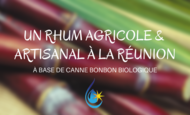 Widget_un_rhum_bio_a__la_re_union__7_-1491471787-1491471796