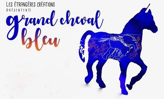 Visuel du projet GRAND CHEVAL BLEU cinéma expérimental pour l'enfance