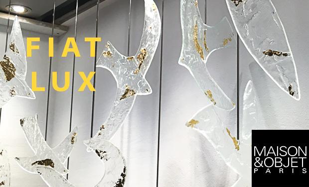 Visuel du projet Fiat Lux