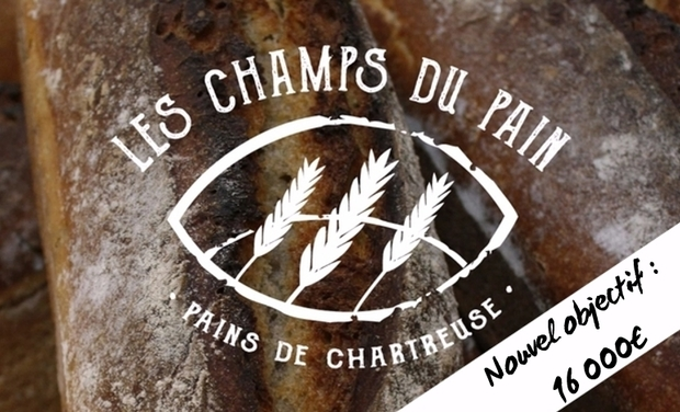 Visuel du projet Les Champs du pain recherchent four